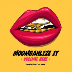 moombahlize-it-vol-9-presented-by-dj-mess