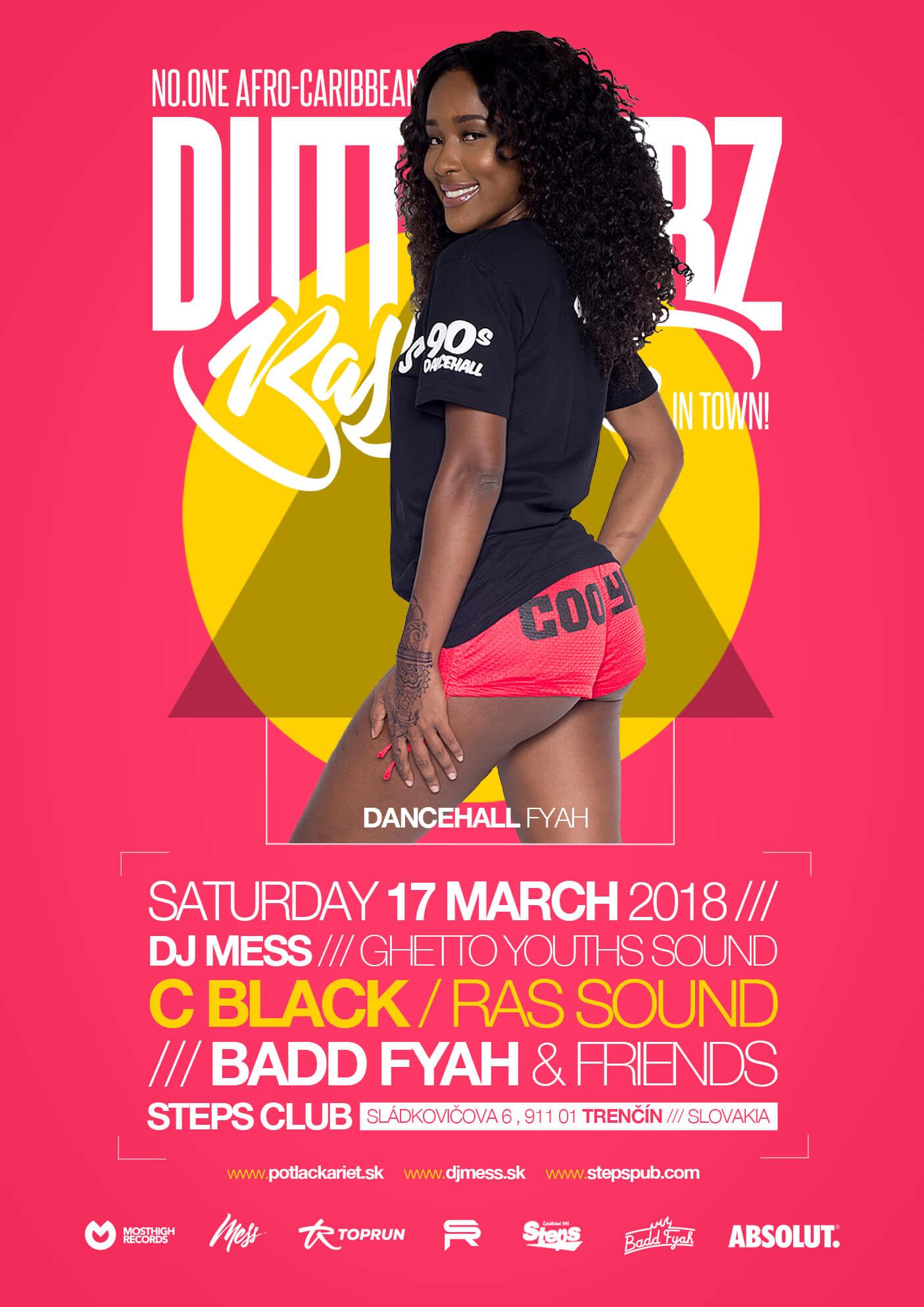17 03 2018 DUTTY VYBZ BASHMENT   DANCEHALL FYAH - DJ MESS
